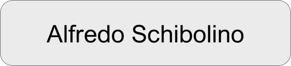 Namensschild Gravouni Alu silber 70x16mm
