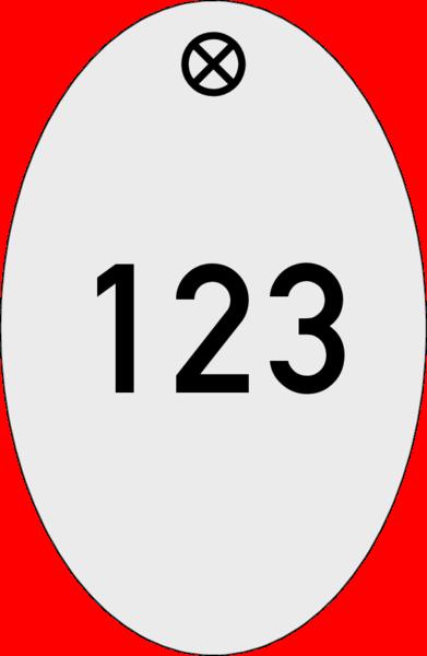 Schlüsselanhänger oval Alu silber matt 30x46x1,5mm, Kontur gestanzt, 1 Loch 4 mm, mit Gravur Zahl bis 3-stellig